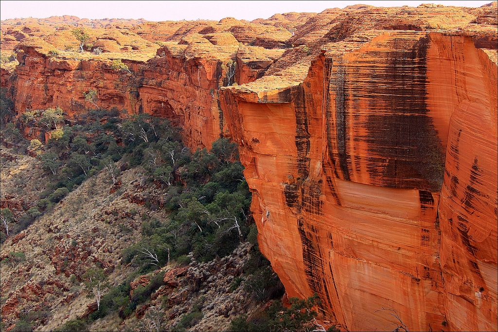 Kings Canyon, by loop_oh. Used under a Creative Commons license